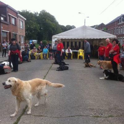 Lors de la démonstration du club canin de Saint-Georges-sur-Meuse